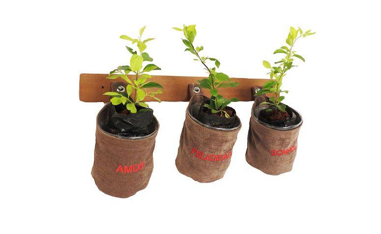 "Kit Plante Felicidade por R$ 89,00 na <a href=""http://www.redeasta.com.br/kit-plante-felicidade.html"" target=""_blank"">Asta</a>"