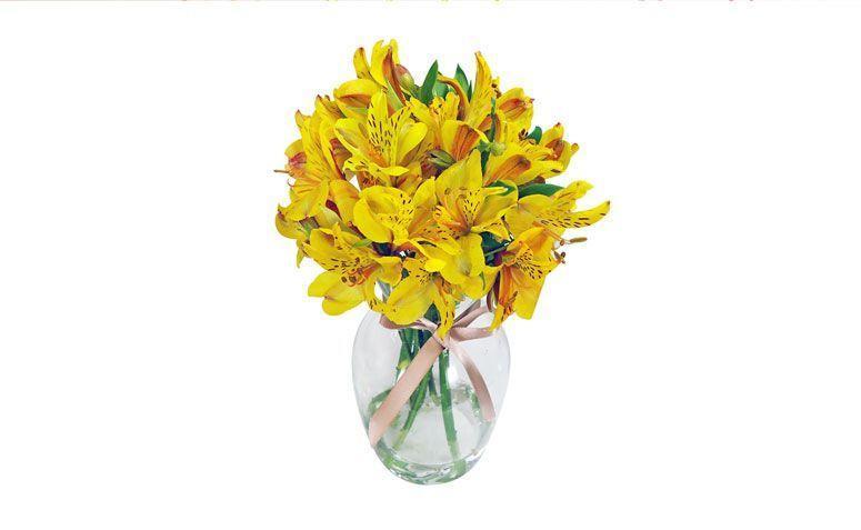 """Arranjo admiração amarela no vaso por R$ 59,90 na <a href=""""http://www.giulianaflores.com.br/departamento-raiz/admiracao-amarela-no-vaso/p12137-d0/?src=flor29e90"""" target=""""_blank"""">Giuliana Flores</a>"""