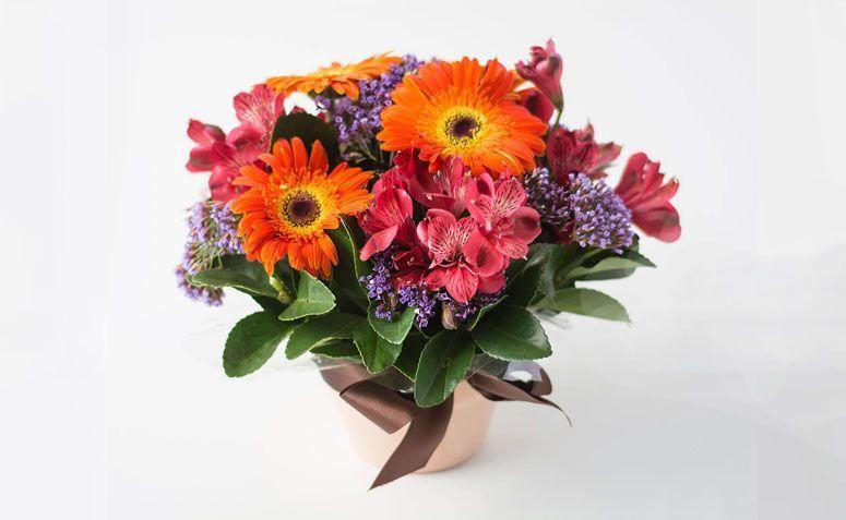 """Arranjo de flores do campo cores vivas por R$ 119,90 na  <a href=""""http://www.isabelaflores.com/tipos-de-arranjos/arranjos-de-flores/arranjos-de-flores-do-campo-coloridas/arranjo-de-flores-do-campo-coloridas-em-cores-vivas.html"""" target=""""_blank""""> Isabela Flores </a>"""