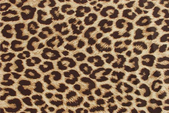 animal print Guia de estampas