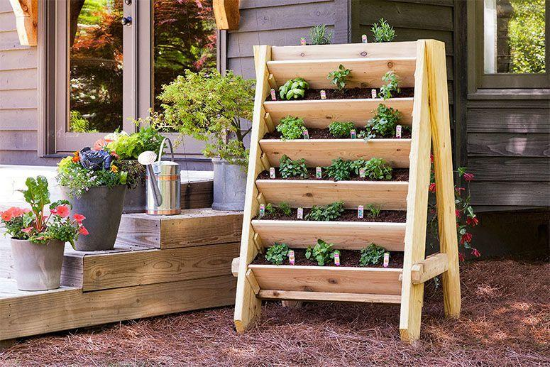 "Foto: Reprodução / <a href=""https://bonnieplants.com/library/how-to-build-a-vertical-herb-planter/"" target=""_blank"">Bonnie Plants</a>"