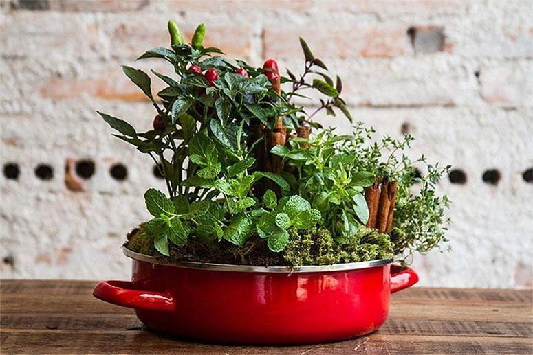 "Foto: Reprodução / <a href=""http://diy-enthusiasts.com/diy-garden/indoor-herb-garden-grow-kitchen/"" target=""_blank"">DIY Enthusiasts</a>"
