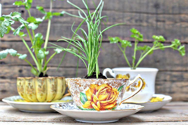 "Foto: Reprodução / <a href=""http://www.intimateweddings.com/blog/diy-herbs-in-a-teacup-eco-friendly-favors/"" target=""_blank"">Intimate Weddings</a>"