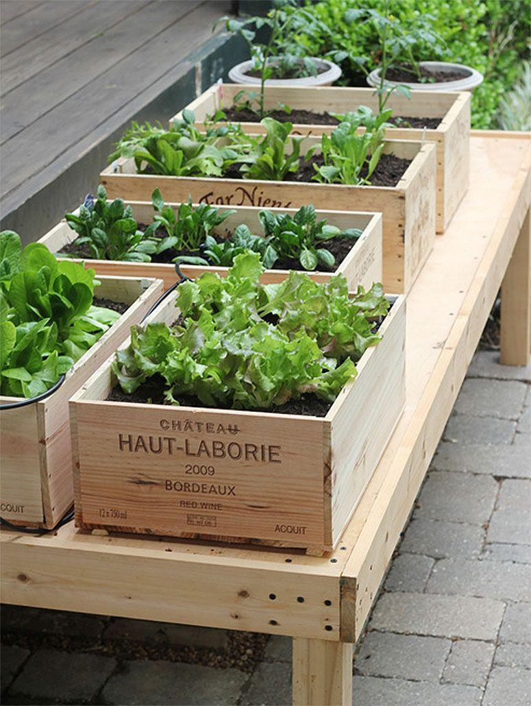 """Foto: Reprodução / <a href=""""http://www.llhdesignsblog.com/2011/03/details-of-our-first-ever-garden.html"""" target=""""_blank"""">LLH Designs</a>"""