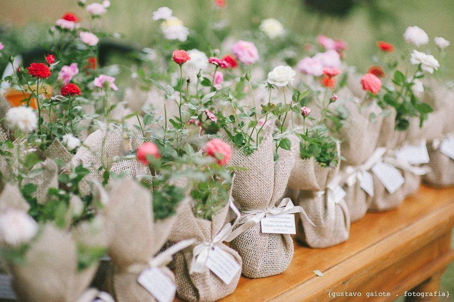 Stiklinger av roser Foto: Avspilling / Le petit Vert