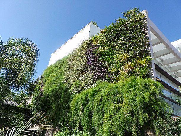 "Foto: Reprodução / <a href=""http://www.marisalima.com.br/#!jardins-verticais/c11ag"" target=""blank_"">Marisa Lima</a>"
