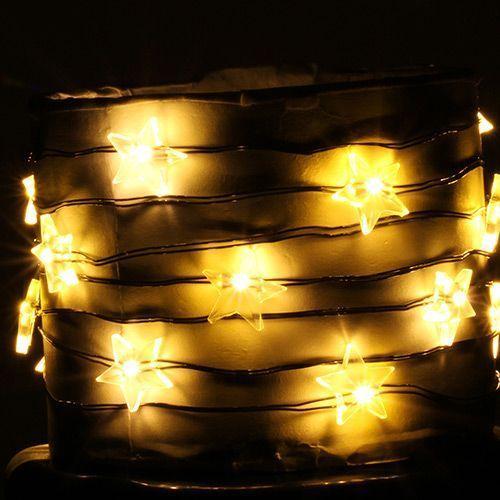 Estrella fulgurante, 20 bulbos por $ 31.41 en los EE.UU.