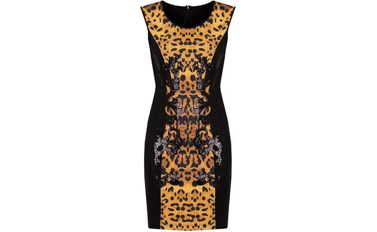 Animal Print Dress oleh R $ 223,30 di Capitollium