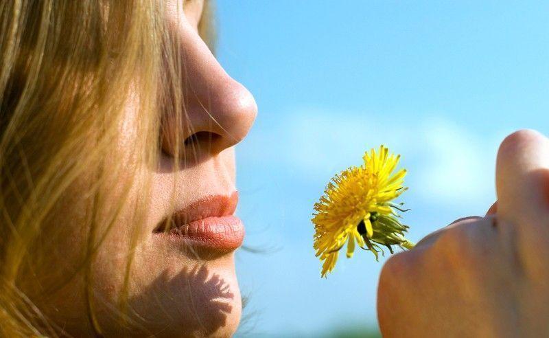 Como ter o nariz perfeito