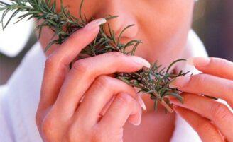 Ervas medicinais na alimentação