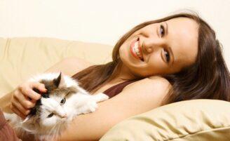 Resolva o problema de pelos de animais de estimação pela casa