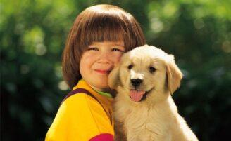 Como escolher um animal de estimação para seu filho