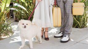 6 dicas para ser um bom hóspede na casa de parentes