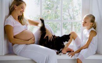 Toxoplasmose – causas, sintomas, tratamento e prevenção