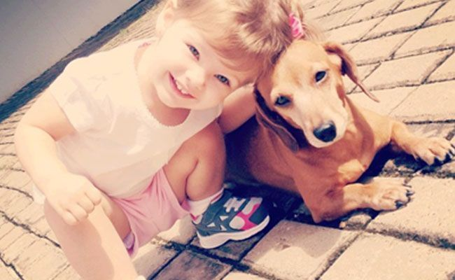 Dr. Pet dá dicas sobre animais de estimação para crianças de cada idade