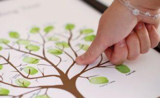 20 ideias que vão além do tradicional livro de assinaturas do casamento
