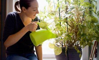 8 maneiras de proteger sua casa da poluição do ar