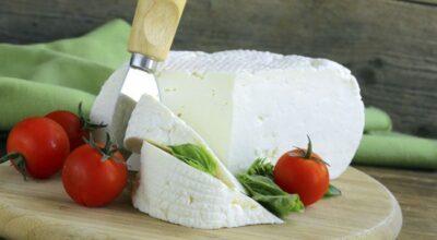 5 benefícios do queijo minas para sua saúde