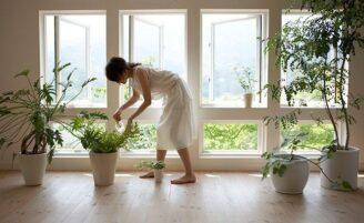10 dicas de Feng Shui para harmonizar sua casa