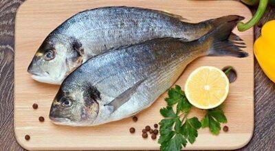 8 peixes e frutos do mar que você deve evitar
