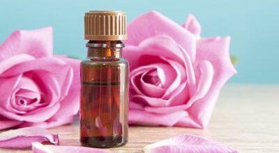Os melhores óleos vegetais para tratamento da pele e dos cabelos