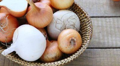 Cebola: conheça os benefícios desse superalimento