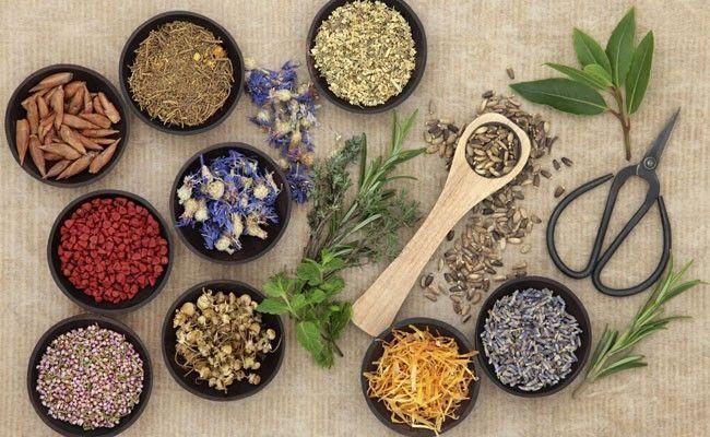 tratamentos naturais para a depressao 8 tratamentos naturais para a depressão