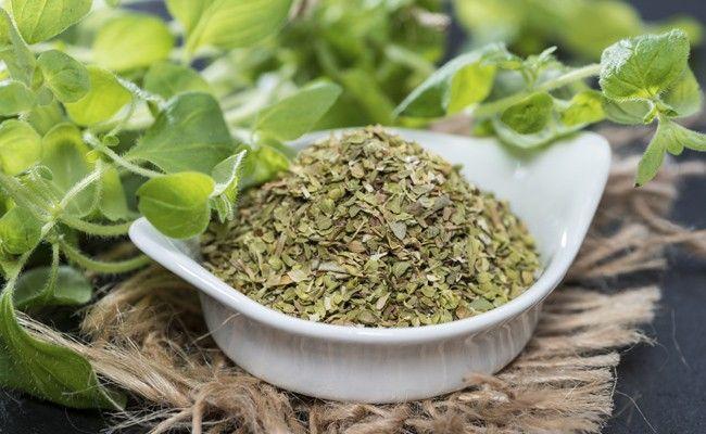 oregano Orégano: bons motivos para incluí lo na sua alimentação