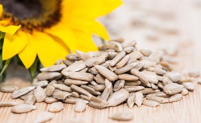 semente de girassol Semente de girassol: uma grande aliada para o emagrecimento