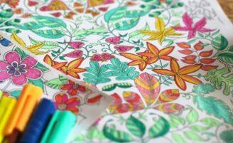 Livros de colorir para adultos: relaxe e descubra seu talento pintando
