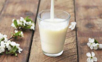 Alergia à proteína do leite de vaca: dicas e receitas práticas