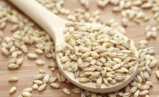 Cevada: um cereal nutritivo e cheio de benefícios