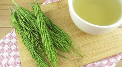 Chá de cavalinha contribui para diminuir a retenção de líquido e eliminar toxinas