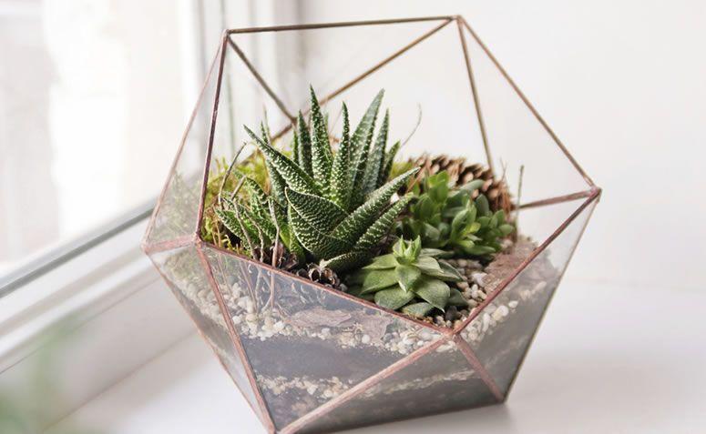 mini jardim como fazer onde comprar e fotos para inspirar. Black Bedroom Furniture Sets. Home Design Ideas