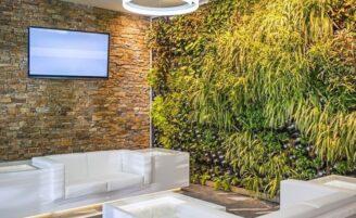 Como montar um jardim vertical para renovar os ambientes do seu lar