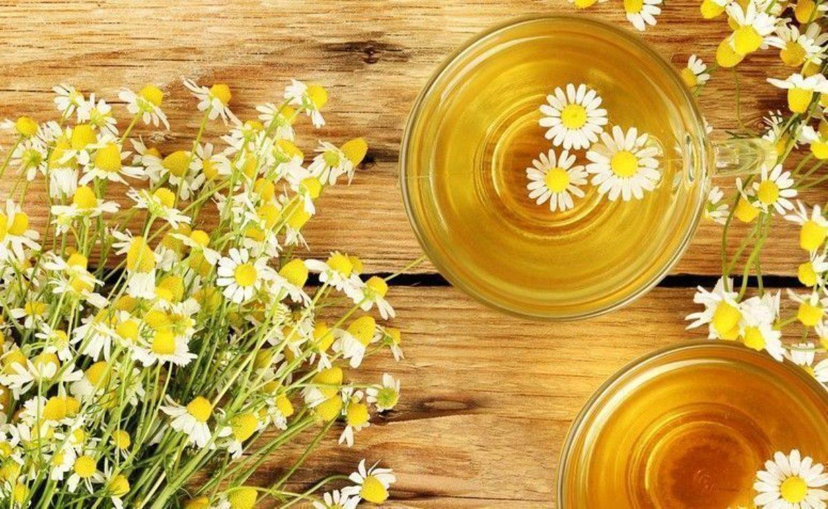 chá de camomila efeitos colaterais