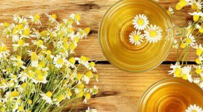 10 calmantes naturais que ajudam a tratar a ansiedade, insônia e até depressão