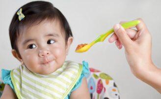 50 receitas de papinha para bebê completas e saborosas