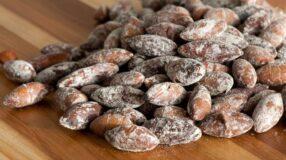 Castanha de baru combate o colesterol ruim e pode ajudar no emagrecimento