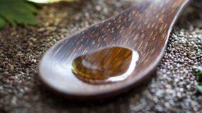6 bons motivos para conhecer o óleo de chia