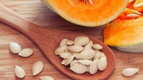 Conheça os benefícios do consumo regular da semente de abóbora