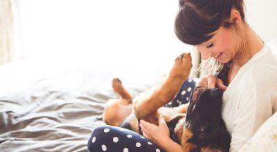 7 receitas caseiras para tirar o cheiro de cachorro da casa