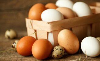 Ovo marrom ou ovo branco: qual é a diferença e qual deles é o melhor?
