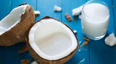 Leite de coco vegetal: uma opção saborosa e saudável para o seu dia a dia