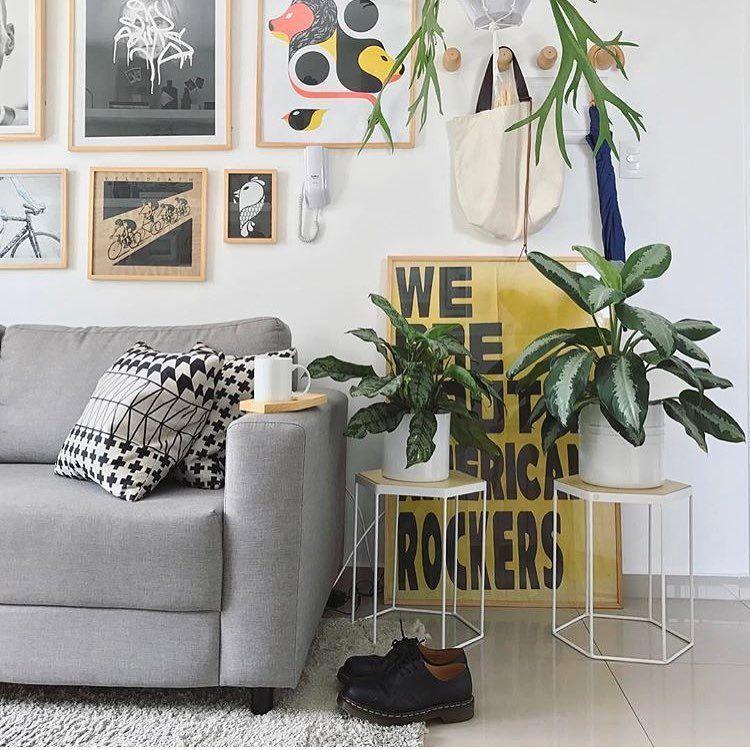 Resultado de imagem para decorar com plantas