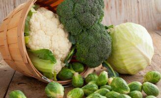 Energia verde: os 10 vegetais mais ricos em proteínas