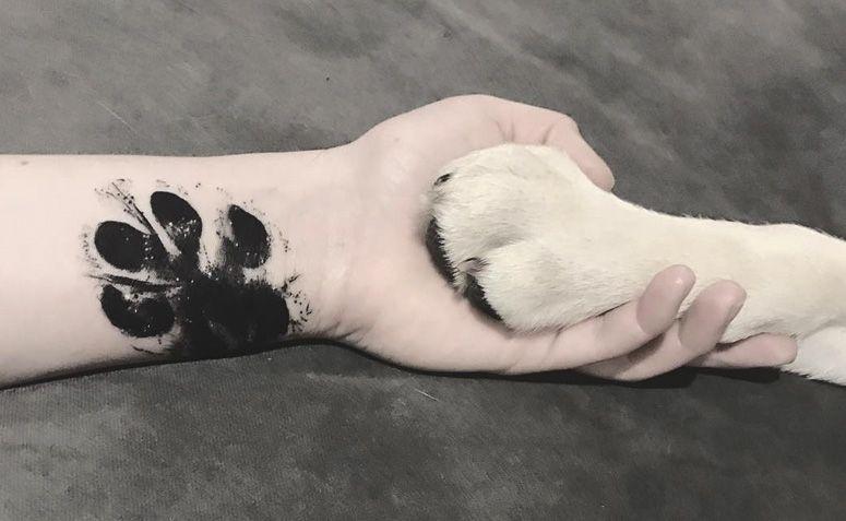 50 Tatuagens De Pata De Cachorro Para Inspirar A Sua