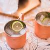 10 receitas de Moscow Mule para você preparar no final de semana