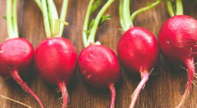 Rabanete: mais cor e sabor às saladas e benefícios para a saúde