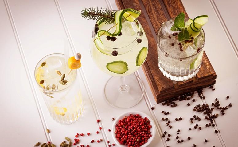Drinks com gin: 14 receitas para você se deliciar com a bebida da moda